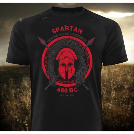 Gods Rage Spartan 480 B.C, T-Shirt